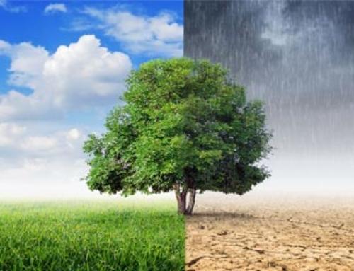 Σοκ από την έκθεση του IPCC για την κλιματική αλλαγή